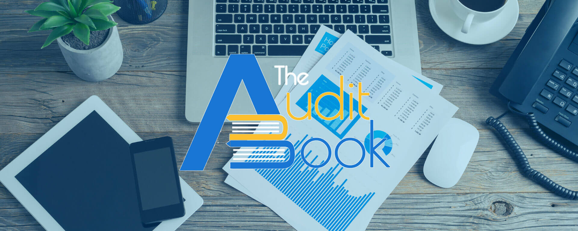 The Audit Book